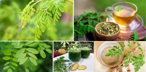 Miracle Moringa - forum - composition - effets secondaires